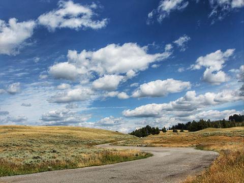 罗斯福区旅游景点图片