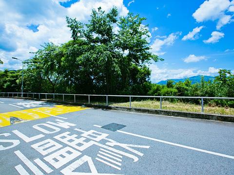 香港中文大学旅游景点图片