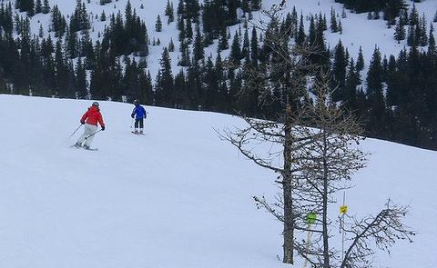 露易丝湖滑雪场