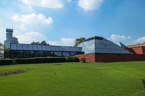 西汉南越王博物馆的图片