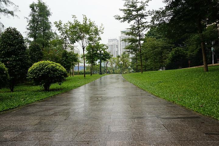 """""""在公园的湖边欣赏深圳的高楼大厦,效果也很好哦!湖边的一个小凉亭,可以在凉亭上欣赏湖面风景。公园的拱桥_荔枝公园""""的评论图片"""
