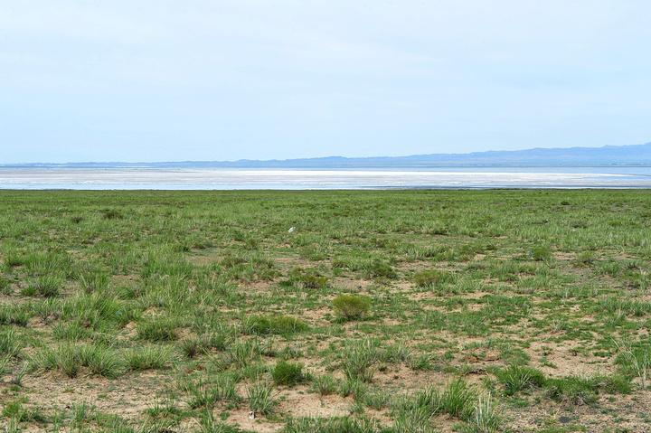"""""""天气不好,巴里坤湖看上去不如3年前秋季来时漂亮_巴里坤湖""""的评论图片"""