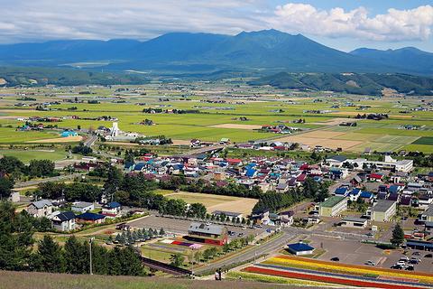 中富良野町旅游图片