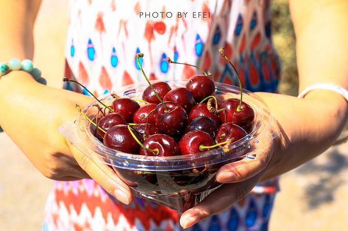 首先是水果图片