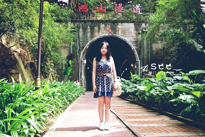 鸿山隧道图片