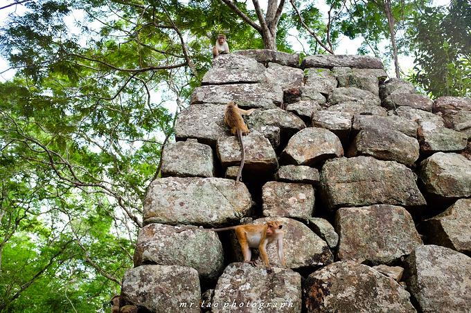 狮子岩图片