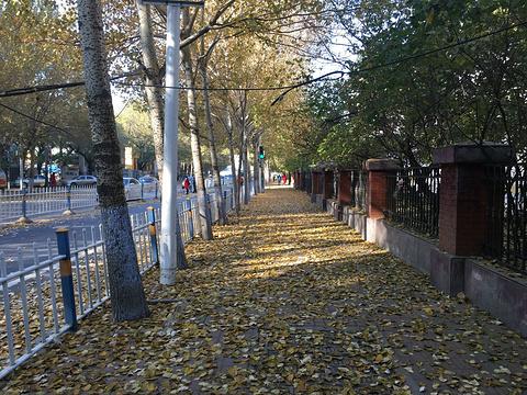 东北烈士纪念馆旅游景点图片