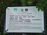 广元旅游景点攻略图片