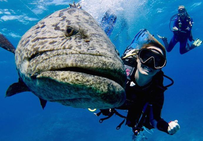 """""""终于,来到了10月1日,对我而言此行的重..._大堡礁""""的评论图片"""