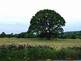 英国湖区旅游景点攻略图片
