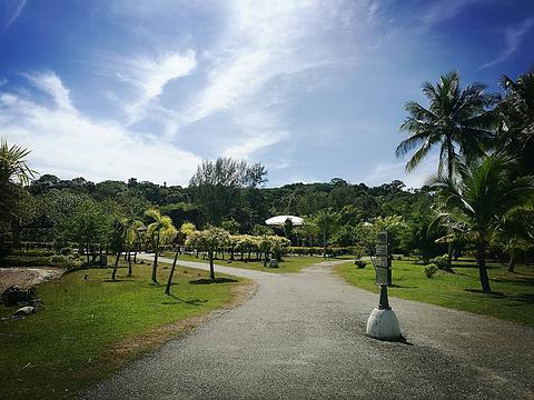传奇公园旅游景点图片