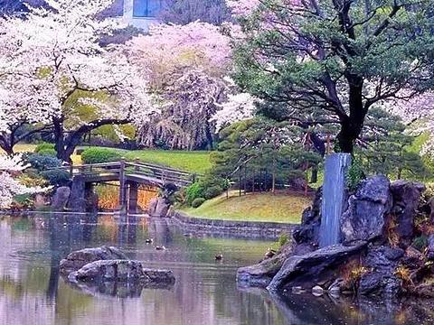 小石川后乐园旅游景点图片