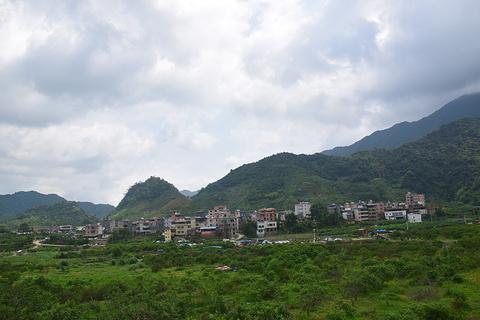 溪头村的图片