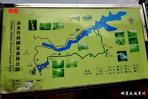楠竹海旅游景点攻略图