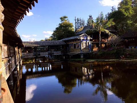 中科院西双版纳热带植物园旅游景点攻略图