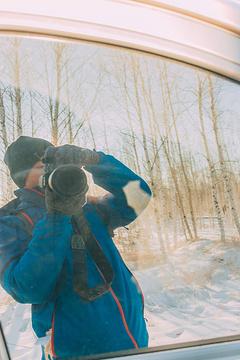 白桦林旅游景点攻略图