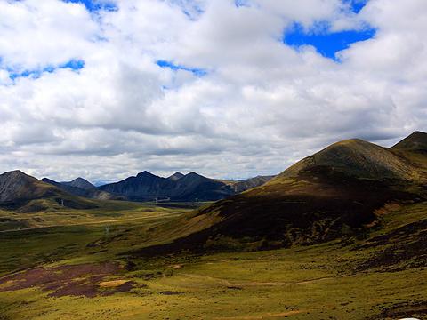 米拉山旅游景点图片