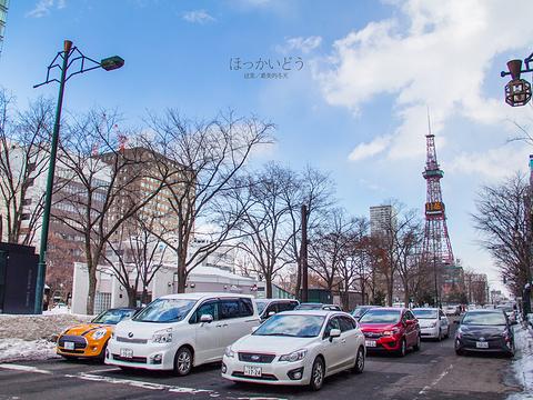札幌电视塔旅游景点图片