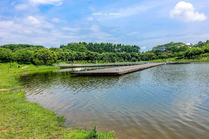 广州大学城图片
