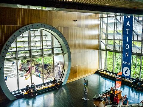 新西兰蒂帕帕国家博物馆旅游景点图片