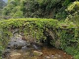 井冈山旅游景点攻略图片