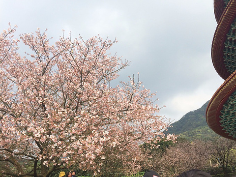 淡水天元宫旅游景点攻略图