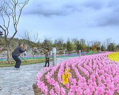 大手牵小手,在唐山发现一个不一样的春天
