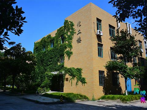 同济大学旅游景点图片