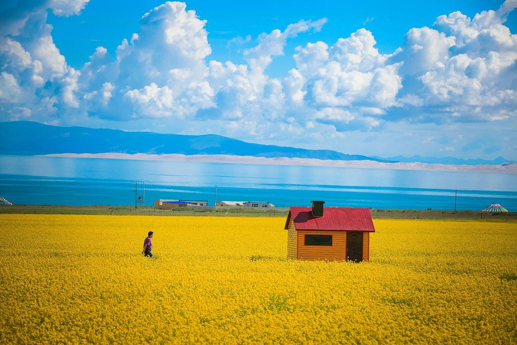草原落日•群鸟归湖,青海三日游