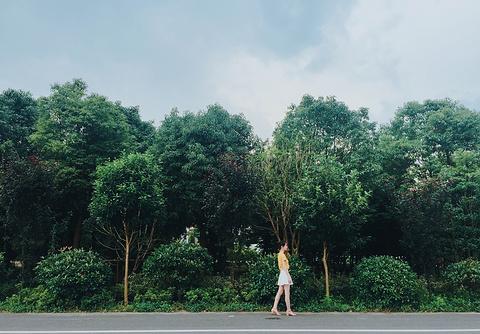 碧云花园旅游景点攻略图