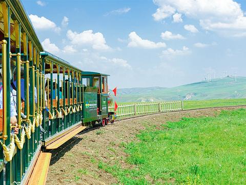 辉腾锡勒黄花沟草原旅游区旅游景点图片
