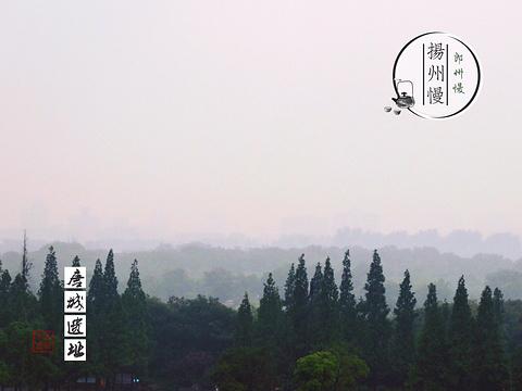 唐城遗址博物馆旅游景点图片