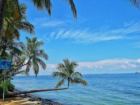 巴拉湾海滩旅游景点图片