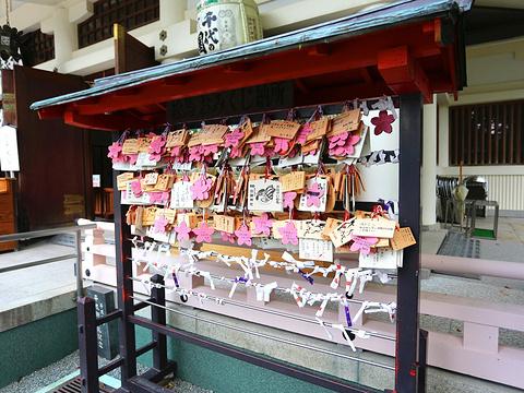 加藤神社旅游景点图片