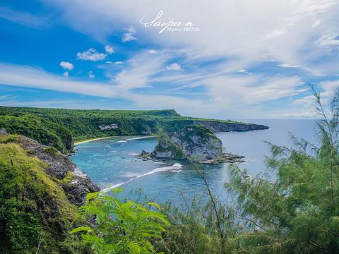 鸟岛旅游景点图片
