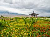 青海旅游景点攻略图片