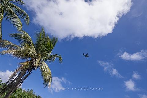天宁岛的图片