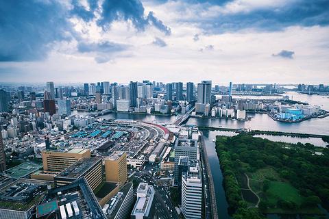 东京湾的图片