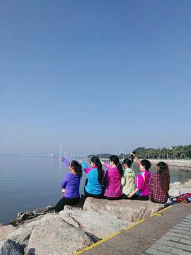 欢乐海岸teamLab未来游乐园旅游景点攻略图