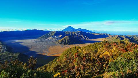 爪哇旅游图片