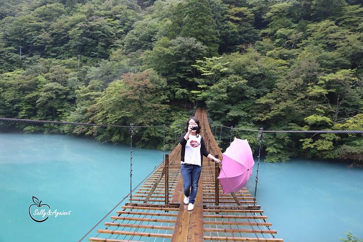 """""""又走了一段山路后,突然眼前豁然开朗,那如宝石一般的蓝,那如仙境般的云雾,这不就是我梦中的那个春么_梦之吊桥""""的评论图片"""