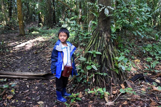 亚马逊雨林:乐乐的日记图片