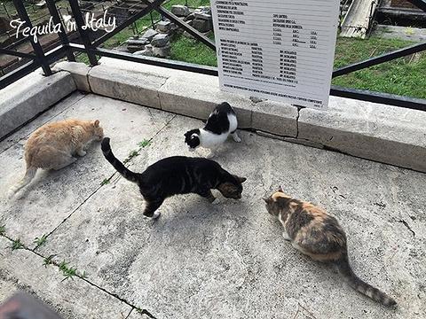 银塔广场旅游景点攻略图