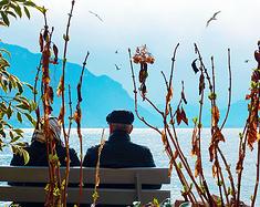 瑞士湖泊雪山小火车 奥地利历史小镇 双国环游