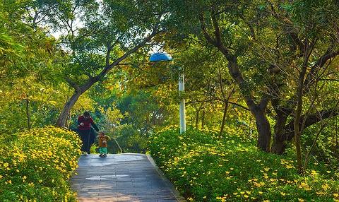 攀枝花公园旅游景点攻略图