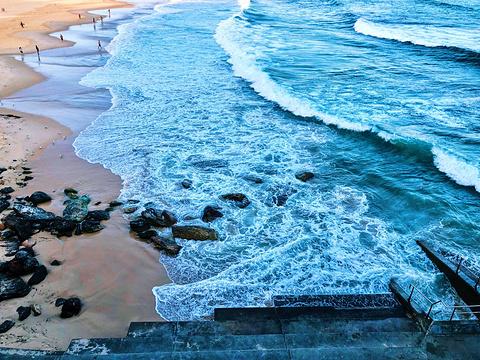 邦迪海滩旅游景点图片