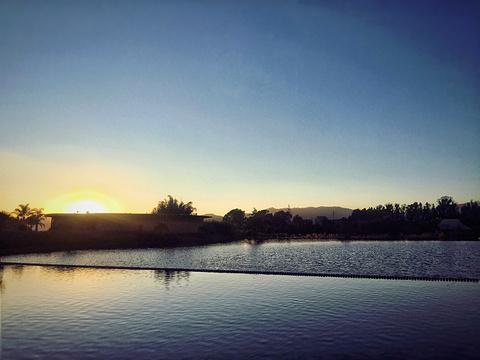 月亮湾湿地公园旅游景点攻略图