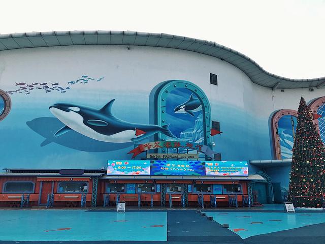 """""""11点观看海狮表演,因为表演间隔时间较久且冬季天黑非常早,所以这样安排不会影响到下午滑雪游玩的时间哦_哈尔滨极地馆""""的评论图片"""