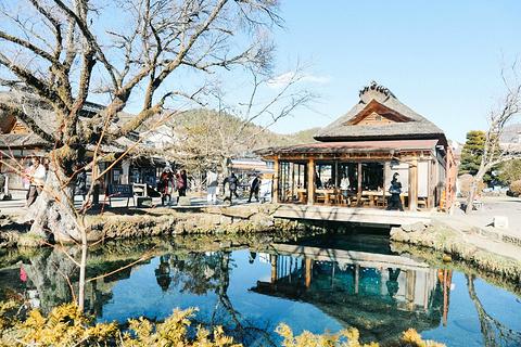 忍野八海名泉そば旅游景点攻略图