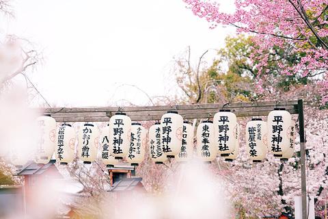平野神社的图片